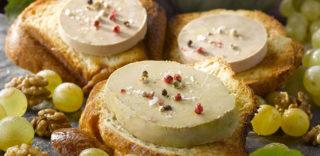 Blocs foie gras en conserve
